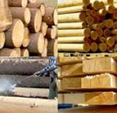 Scierie bois rochefort